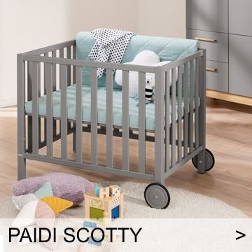 PAIDI Scotty