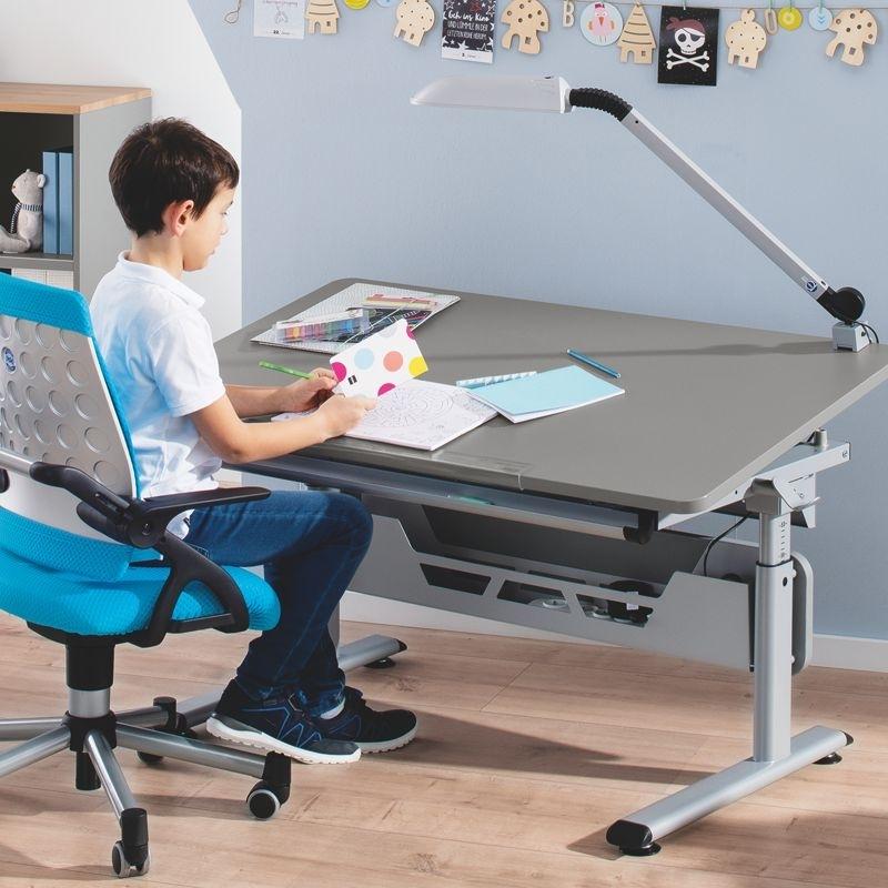 Paidi Schreibtisch Diego 2021
